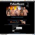 Cyber Bears Pro Biller Page