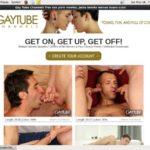 Gay Tube Channels Films