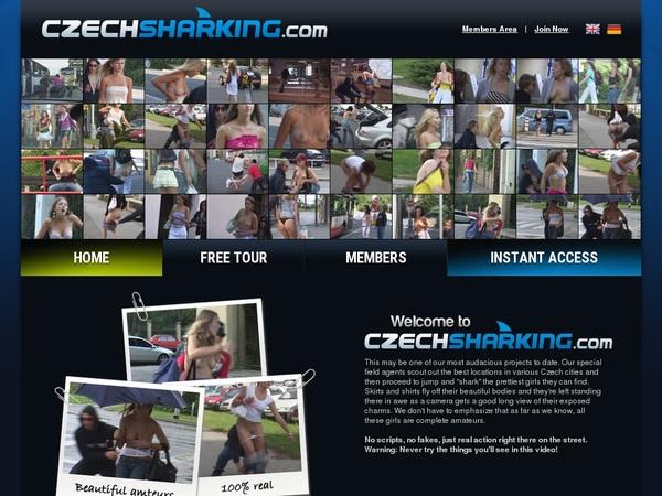 Premium Account Czechsharking