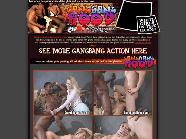 Free Premium Gangbanghood.com Accounts