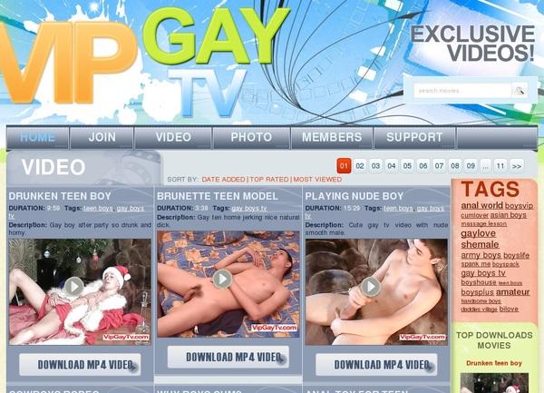 Vipgaytv Free Members